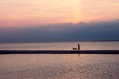 Homme avec le chien sur le fond de coucher du soleil St Petersburg Russie rayonnement des lumières, panorama de la ville paysage, image stock