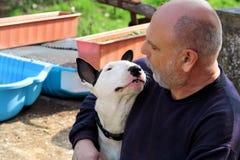 Homme avec le crabot Chien blanc de bull-terrier anglais en compagnie de son propriétaire s'asseyant et appréciant chez le chien  Photos stock