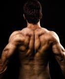 Homme avec le dos intense musculaire Photographie stock