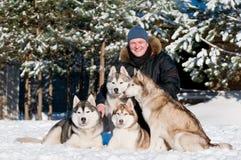 Homme avec le groupe du chien de traîneau sibérien à Image stock