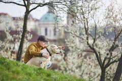 Homme avec le parc public de chien au printemps Image stock