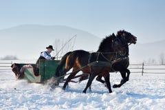 Homme avec le traîneau tiré par des chevaux Image libre de droits