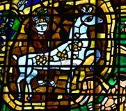 Homme avec le verre souillé de cheval Photographie stock libre de droits