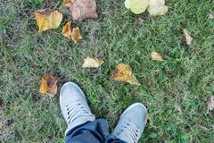 Homme avec les espadrilles grises à l'herbe verte regardant ses chaussures Images stock