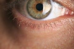 Homme avec les yeux verts Photographie stock