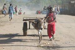 Homme avec un chariot Image stock