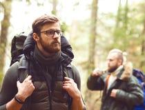 Homme avec une barbe et son ami trimardant dans une forêt Photographie stock libre de droits