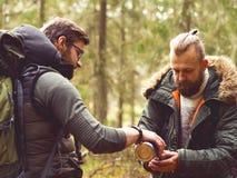 Homme avec une barbe et son ami trimardant dans une forêt Images libres de droits