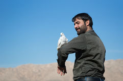 Homme avec une colombe Photos stock
