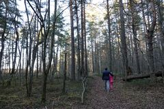 Homme avec une fille dans les bois photo stock