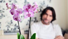 Homme avec une orchidée rose dans la chambre Images stock
