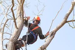 Homme balançant du harnais de sécurité Images libres de droits