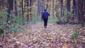Homme barbu dans la forêt avec une hache ralentissant banque de vidéos