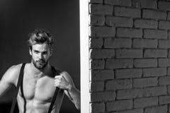 Homme barbu musculaire sexy photographie stock libre de droits