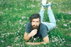 Homme barbu s'étendant sur l'herbe verte Images libres de droits