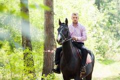 Homme bel sur le cheval photos stock