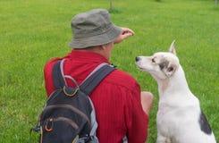 Homme chez chien blanc de alimentation de chemise rouge le jeune tout en se reposant sur une pelouse Images libres de droits