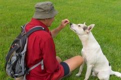 Homme chez chien blanc de alimentation de chemise rouge le jeune tout en se reposant sur une pelouse verte Images stock