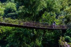 Homme conduisant l'équitation au-dessus du vieux pont en montagnes guatémaltèques photo stock