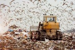 Homme conduisant un camion à ordures sur une décharge photographie stock libre de droits