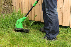 Homme coupant l'herbe avec le trimmer électrique photo stock