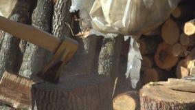 Homme coupant le bois avec une hache 15 banque de vidéos