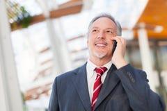 Homme d'affaires à l'aide d'un téléphone portable Image stock