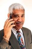 Homme d'affaires aîné photographie stock libre de droits