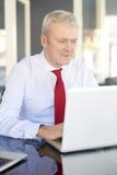 Homme d'affaires aîné avec l'ordinateur portatif Photos libres de droits