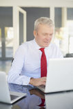 Homme d'affaires aîné avec l'ordinateur portatif Photo stock