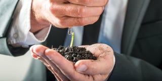 Homme d'affaires arrosant une jeune plante de germination Images libres de droits