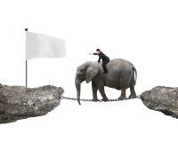 Homme d'affaires avec diriger l'éléphant d'équitation de doigt vers le drapeau blanc Photos stock
