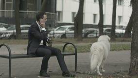 Homme d'affaires avec son chien blanc parlant par le téléphone banque de vidéos