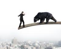 Homme d'affaires contre l'ours noir équilibrant sur le conseil en bois avec ci Photo stock
