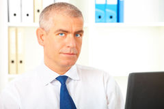 Homme d'affaires dans l'ordinateur portatif de bureau images libres de droits