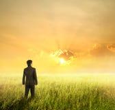 Homme d'affaires de vision dans les domaines et le coucher du soleil Photo stock