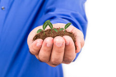 Homme d'affaires Holding Soil et usine Image stock