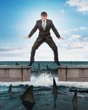 Homme d'affaires se tenant au-dessus des requins photos libres de droits