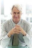 Homme d'affaires supérieur Photo libre de droits