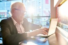 Homme d'affaires supérieur Using Laptop au soleil photo stock