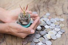 Homme d'affaires tenant l'usine poussant d'une poignée de pièces de monnaie, lundi images stock