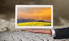 Homme d'affaires tenant le comprimé un pré de coucher du soleil d'affichage Image libre de droits