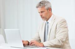Homme d'affaires travaillant dans le bureau Image stock