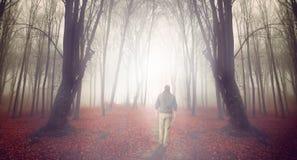 Homme dans avants brumeux Photos stock