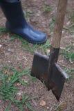 Homme dans des bottes en caoutchouc plantant un arbre en parc Jour de terre, travail de famille Images stock
