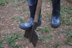 Homme dans des bottes en caoutchouc plantant un arbre en parc Jour de terre, travail de famille photos libres de droits