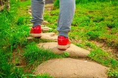 Homme dans des espadrilles rouges sur un chemin Photographie stock libre de droits