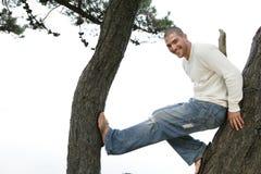 Homme dans l'arbre Images stock