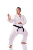 Karateka Image libre de droits