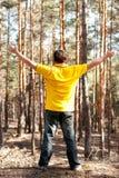 Homme dans la forêt de pin Photos stock